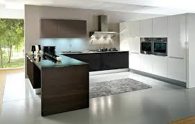 european design kitchens european kitchen cabinets allnewspaper info
