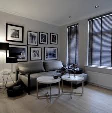 1 bedroom apartment decorating ideas home design ideas
