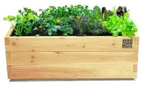 herb garden planter 10 easy kitchen herb garden ideas to grow culinary herbs