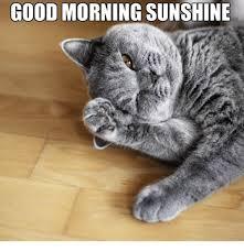 Good Morning Sunshine Meme - good morning sunshine good morning meme on me me