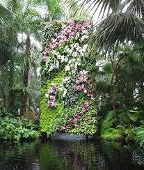 Indoor Vertical Gardens - why indoor vertical gardens are good for your home u0026 health