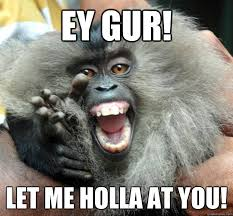 Monkey Meme Generator - 47 very funny monkey memes images pictures gifs photos picsmine