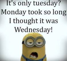 Tuesday Funny Memes - tuesday memes funny pictures about tuesday