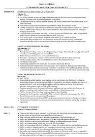 adjunct instructor resume sample biology professor resume samples velvet jobs