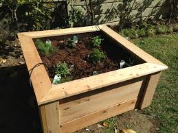 100 herbs planter vegetables u0026 herbs planter pallet