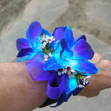 blue corsages for prom blue orchids prom corsage prom128 prom128 24 99 terra