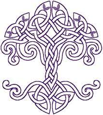 dara celtic knot the meaning of the word dara can be traced to