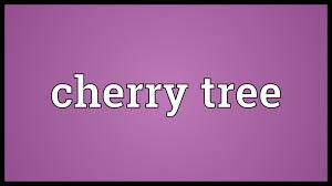 cherry tree meaning