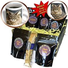 maine gift baskets cats maine coon coffee gift baskets coffee gift