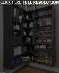 Home Decor Sites L by Black Kitchen Pantry Storage Outofhome Solution With Wall Mounted