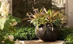 Garden Pots Ideas Container Gardening Ideas Garden Design