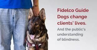 home fidelco guide dog foundation inc