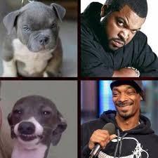 Frowning Dog Meme - dog face snoopdogg icecube frown smile lmao meme like