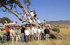 safari home odyssey safaris where the journey beings