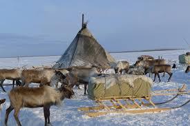 reindeer herder festival salekhard the official globe trekker