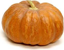 www pumpkin pumpkins fairytale information recipes and facts