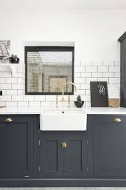 Ideas For Kitchen Cabinet Doors by Best 25 New Cabinet Doors Ideas On Pinterest Handles For With