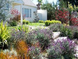 los angeles spanish style landscaping landscape traditional with