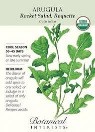 botanical sts arugula certified organic heirloom seeds 200 seeds