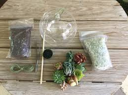 do it yourself hanging table top glass terrarium kit u2013 hearts of jade