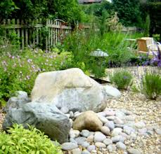 landscaping exciting backyard desert landscaping design ideas for