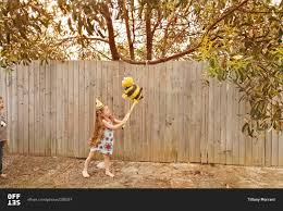 bumblebee pinata girl hitting a bumblebee pinata stock photo offset