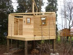 comment fabriquer un arbre a chat construction de notre cabane sur pilotis la cabane en bois d