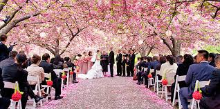 garden wedding venues nj outdoor wedding venues ny outdoor garden wedding in