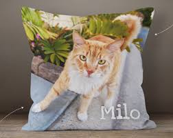 personalized cat photo pillow pet lover gift