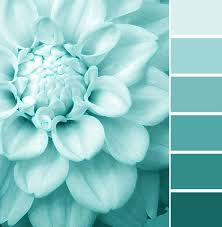 best 25 aqua paint colors ideas on pinterest palladian blue