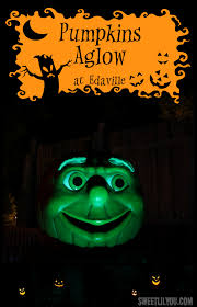 pumpkins aglow at edaville usa halloween family fun sweet