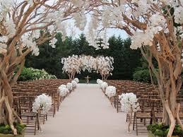 cã rã monie de mariage laique mariage en plein air et orchidées blanches cérémonie insolite