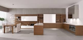 Kitchen Cabinet Surfaces Modern Beige Kitchen Cabinets Roselawnlutheran