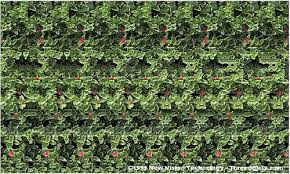 illusions images 3d magic eye wallpaper and background photos