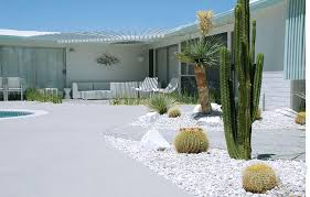 wonderful desert landscaping plants with pool for modern style