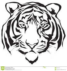bengal clipart tiger outline pencil and in color bengal clipart