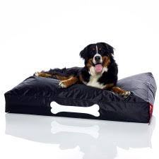 dog beds hayneedle