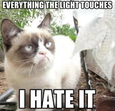 The Grumpy Cat Meme - 21 grumpy cat memes to instantly make you grumpy however happy you