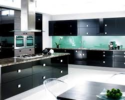 tremost com i 2016 10 beauteous bold black kitchen