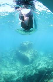 Montana snorkeling images Bermuda 100 jpg