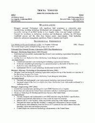 Handyman Resume Examples by Maintenance Man Resume