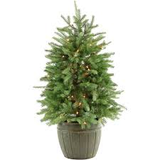 fraser hill farm 4 ft pre lit potted pine artificial