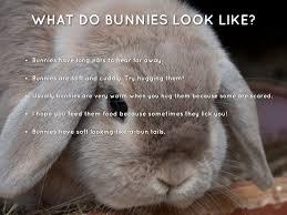 like a bunny bunny by edna patricia