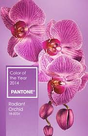 images about colour wheel beyond on pinterest color wheels and