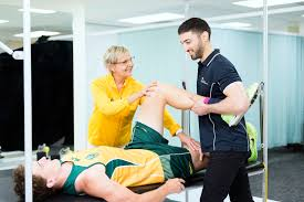 study bachelor of physiotherapy honours at the university of