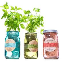 self watering indoor planters kitchen herb kit gift ideas finder