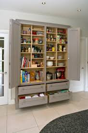 Kitchen Pantry Cupboard Designs by Best 25 Wall Pantry Ideas On Pinterest Built Ins Pull Out Base