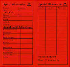 special observation cards and request cards animal and plant