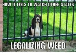Legalize Weed Meme - how it feels to watch other states legalizing weed mematic net