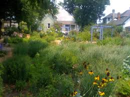 native plant nursery melbourne a native garden design master woodworking